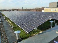 Green Roof, Sedum roof, bio roof, biosolar, green solar, solar install